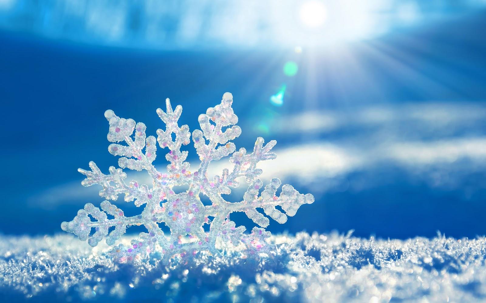 Sneeuwvlok in zon